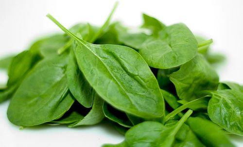Mẹo bảo quản rau có lá tươi lâu trong tủ lạnh - Ảnh 3