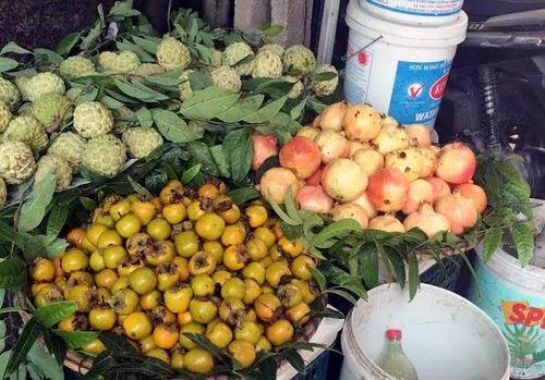 Tám loại hoa quả Trung Quốc nhập về Việt Nam nhiều nhất - Ảnh 2