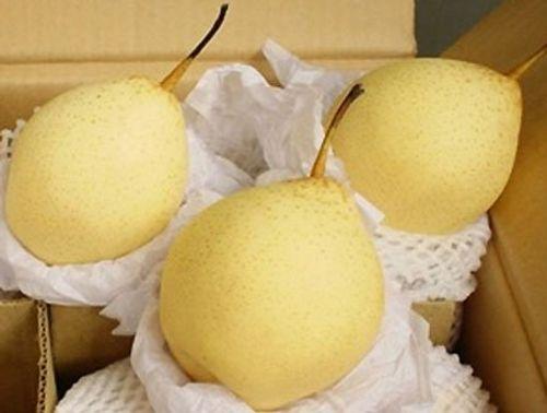 Tám loại hoa quả Trung Quốc nhập về Việt Nam nhiều nhất - Ảnh 4