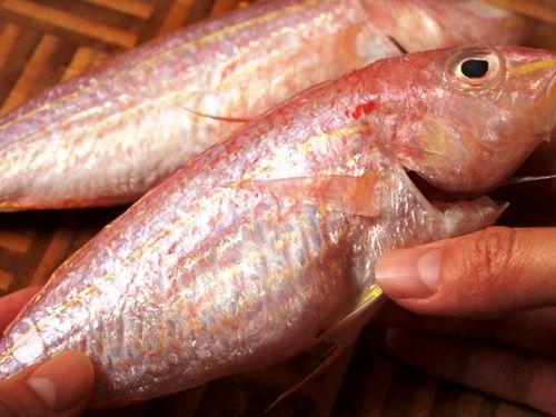 Bữa trưa ngon miệng với món cá hồng sốt cà chua - Ảnh 1