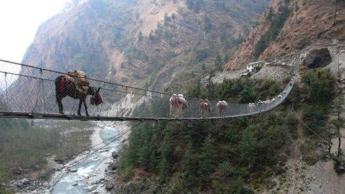 15 cây cầu điên rồ và đáng sợ nhất thế giới – Phần 2 - Ảnh 13