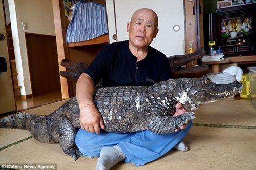 Cụ ông 65 tuổi nuôi cá sấu cưng, dắt đi dạo phố mỗi ngày - Ảnh 1