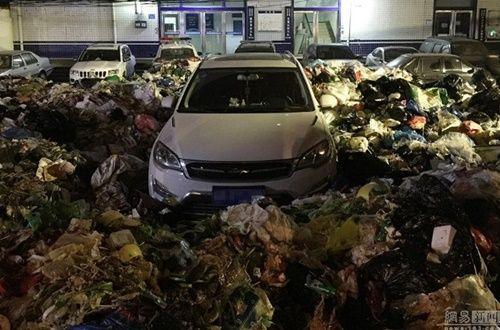 Xe ô tô đỗ trái phép trước trạm rác và kết quả 'nặng mùi' - Ảnh 1