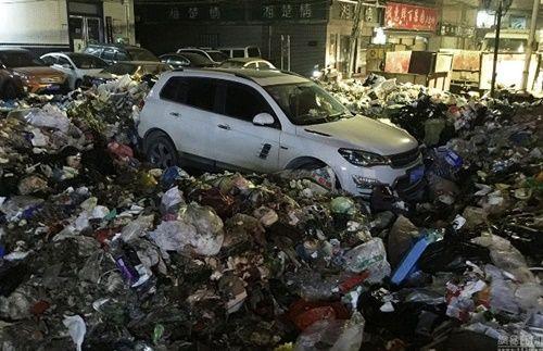 Xe ô tô đỗ trái phép trước trạm rác và kết quả 'nặng mùi' - Ảnh 2