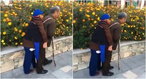 Hạnh phúc chẳng ở đâu xa: cụ ông địu người vợ ốm yếu đi dạo phố mỗi ngày - Ảnh 1