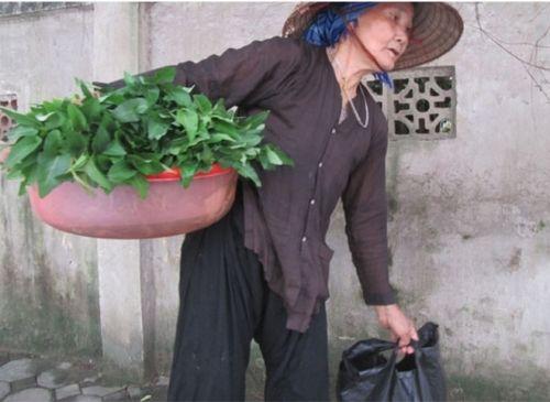 Con gái xua đuổi mẹ già nghèo khi bà mang rau thịt lên phố cho con - Ảnh 2