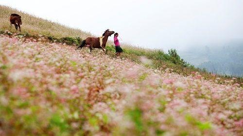 Những điểm đến tuyệt đẹp trong tháng 9 - Ảnh 2
