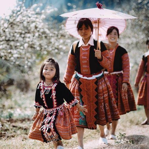 Khách du lịch đổ xô tới Mộc Châu ngắm hoa mơ, hoa mận nở - Ảnh 6