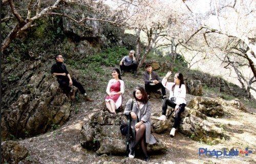 Khách du lịch đổ xô tới Mộc Châu ngắm hoa mơ, hoa mận nở - Ảnh 10