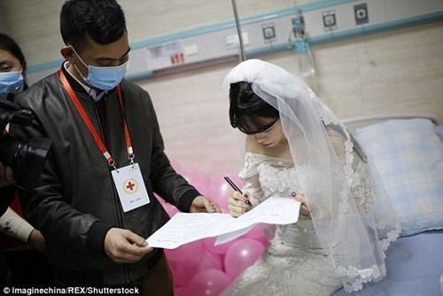 Xúc động đám cưới không chú rể, cô dâu đăng ký hiến tạng sau khi cởi áo cưới - Ảnh 5