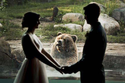 """Cười """"ngả nghiêng"""" với chú gấu sáng chiếm trọn tâm điểm của cô dâu chú rể - Ảnh 4"""