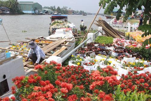 Sa Đéc: Hoa Tết tăng giá, người trồng phấn khởi vì trúng đậm - Ảnh 7