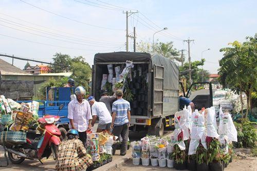 Sa Đéc: Hoa Tết tăng giá, người trồng phấn khởi vì trúng đậm - Ảnh 8