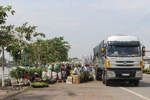 Sa Đéc: Hoa Tết tăng giá, người trồng phấn khởi vì trúng đậm - Ảnh 9