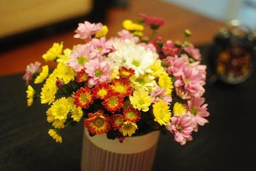 Những loài hoa đẹp và ý nghĩa không phải ai cũng biết trong ngày Tết - Ảnh 6