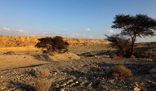 """Israel phát hiện hang muối dài nhất thế giới gần nơi có điển tích Kinh thánh """"người muối"""" - Ảnh 1"""