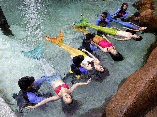 Trường đào tạo nàng tiên cá được ưa chuộng tại nhiều quốc gia - Ảnh 4