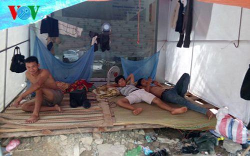Đà Nẵng: Trái khoáy đào đường giữa mùa mưa - Ảnh 4