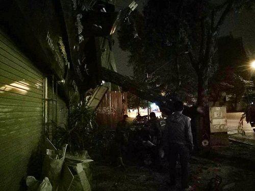Hà Nội: Gió lớn kéo đổ cây xanh đè sập mái nhà dân - Ảnh 5