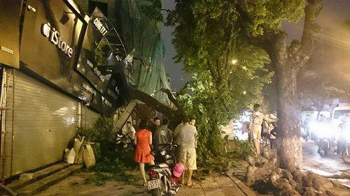 Hà Nội: Gió lớn kéo đổ cây xanh đè sập mái nhà dân - Ảnh 1
