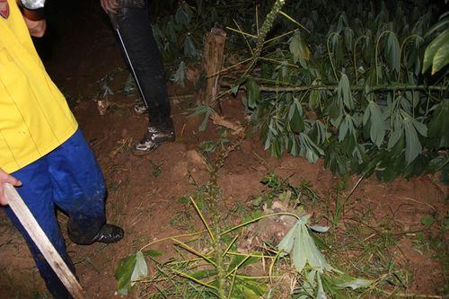 Hàng trăm người xuyên đêm truy lùng nghi phạm giết 4 bà cháu - Ảnh 8