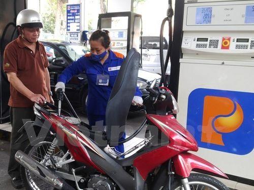 Thanh tra Chính phủ phát hiện nhiều sai phạm của Petrolimex - Ảnh 1