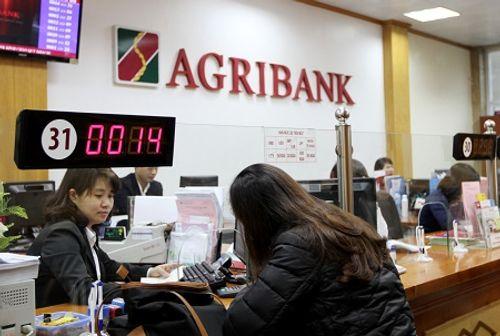 Agribank: Tạo nền tảng vững chắc cho giai đoạn phát triển mới - Ảnh 2
