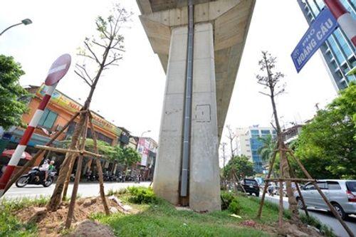 Trồng cây dưới gầm cầu: Không lo vì cây thân nhỏ, được khống chế - Ảnh 1