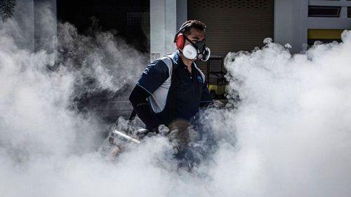 WHO: Virus Zika có khả năng lây lan cao ở châu Á - Ảnh 1