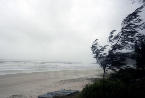 Dự báo thời tiết ngày mai 11/11: Cảnh báo gió mạnh - Ảnh 1