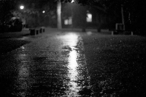Dự báo thời tiết ngày mai 16/11: Bắc Bộ đêm mưa vài nơi - Ảnh 1