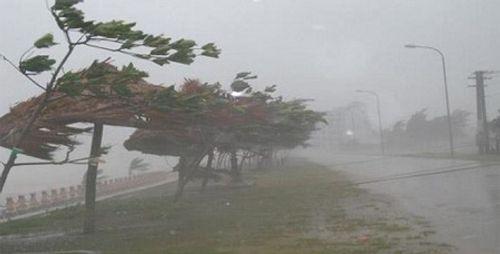 Dự báo thời tiết hôm nay 25/11: Áp thấp nhiệt đới có khả năng mạnh lên - Ảnh 1