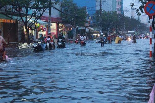 Dự báo thời tiết ngày mai 12/12: Cảnh báo triều cường các sông Nam Bộ - Ảnh 1