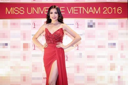 Á hậu Lệ Hằng chính thức đại diện Việt Nam dự Hoa hậu Hoàn vũ thế giới 2016 - Ảnh 1