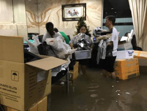 Biệt thự 60 tỷ của Đàm Vĩnh Hưng ngập trong biển nước - Ảnh 4