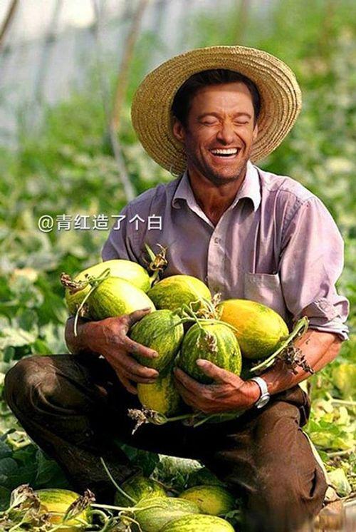 """""""Cười nghiêng ngả"""" với ảnh chế sao Hollywood thu hoạch nông sản cực bá đạo - Ảnh 12"""