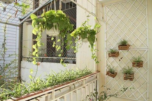 Bình minh trong căn hộ vintage bốn mùa ngập sắc hoa - Ảnh 9