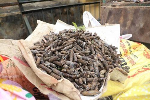 Hưng Yên: Phát hiện 2 tấn đầu đạn trong vườn nhà dân - Ảnh 1