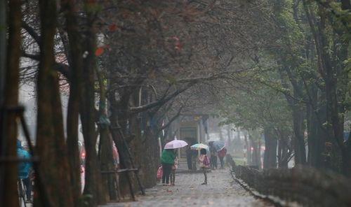 Dự báo thời tiết ngày 20/10: Áp thấp gây mưa ở nhiều nơi - Ảnh 1