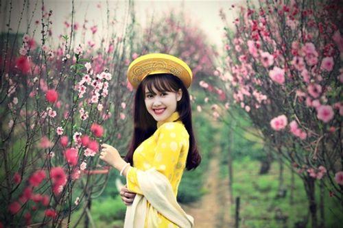 Điểm danh loạt địa điểm chụp ảnh Tết siêu đẹp ở Hà Nội - Ảnh 1