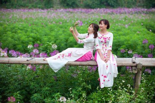 Điểm danh loạt địa điểm chụp ảnh Tết siêu đẹp ở Hà Nội - Ảnh 2