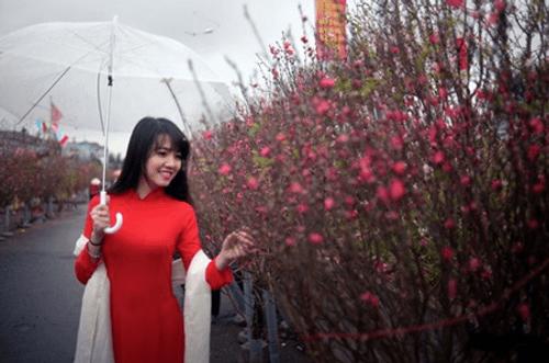 Điểm danh loạt địa điểm chụp ảnh Tết siêu đẹp ở Hà Nội - Ảnh 5