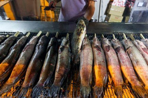 TP.HCM: Phố cá lóc nướng hoạt động suốt đêm phục vụ ngày vía Thần tài - Ảnh 3