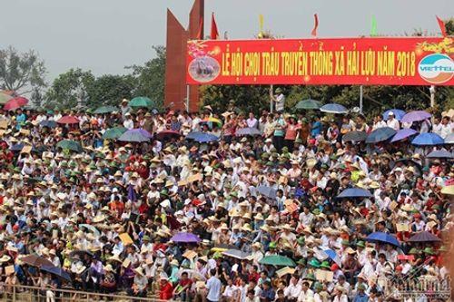 Hội chọi trâu Hải Lựu 2018: Ngàn người chen chúc, trèo tường vào sân đấu - Ảnh 9