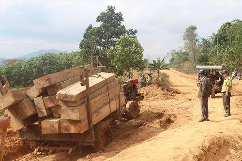 Bắt giữ 5 đối tượng liên quan vụ hàng đoàn xe chở gỗ lậu ở Đắk Lắk - Ảnh 1