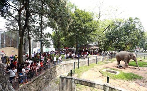 Người dân Hà Nội - Sài Gòn chen chúc đông nghẹt trong công viên ngày nghỉ lễ 30/4 - Ảnh 3