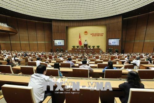Quốc hội biểu quyết thông qua hai dự án Luật - Ảnh 1