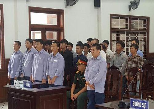 Vụ phá rừng pơmu ở Quảng Nam: Nguyên Đồn phó biên phòng lãnh 4 năm tù - Ảnh 1