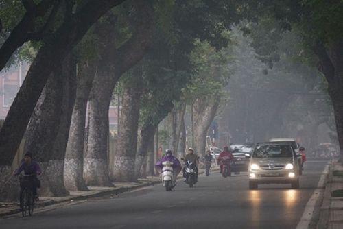Thời tiết ngày 1/2 (27 Tết): Bắc Bộ mưa nhỏ sương mù sáng sớm, Nam Bộ nắng nóng - Ảnh 1