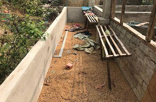 Vụ thiếu nữ giao gà bị sát hại ở Điện Biên: Công an bác bỏ thông tin thất thiệt - Ảnh 1